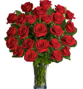 36-rose-rosse
