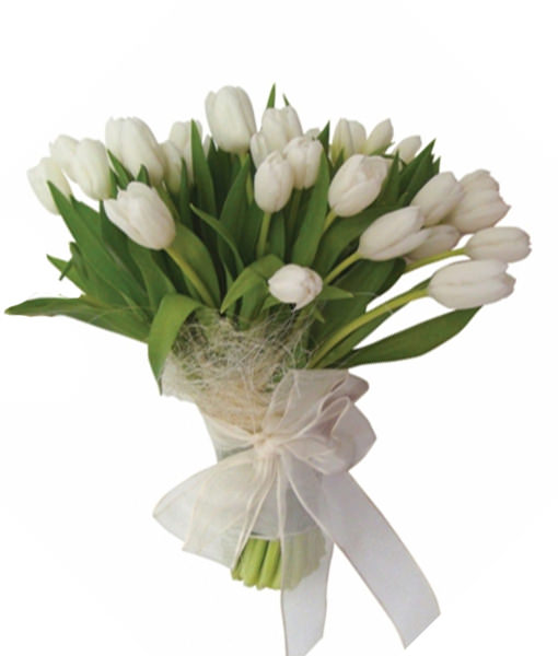 bouquet-di-tulipani-bianchi