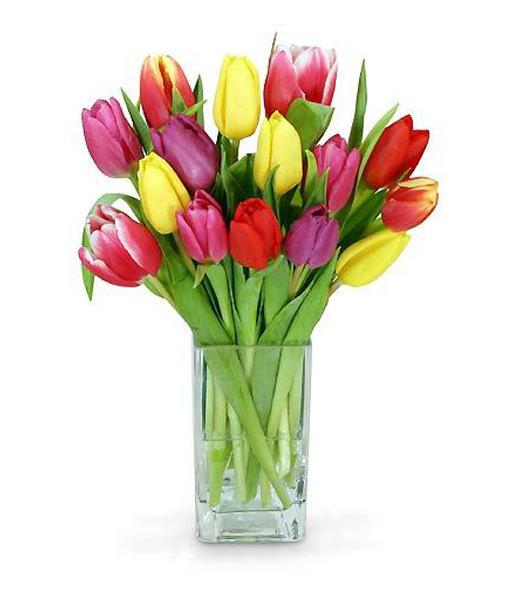 bouquet-di-tulipani-colorati