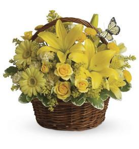 cesto-fiori-misti-gialli