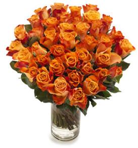50 rose arancio