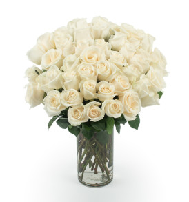 50_White_Roses_Angle_shot__94353.1416926100.500.750