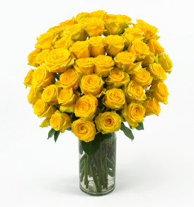 50_Yellow_Roses_Angle_Shot__72732.1416926184.500.750